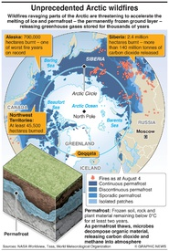 DISASTERS: Arctic wildfires infographic