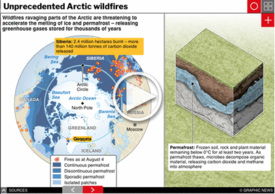 DISASTERS: Arctic wildfires interactive infographic (1) infographic