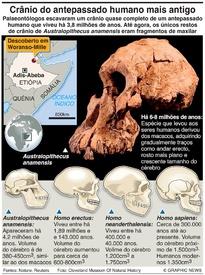CIÊNCIA: Antepassado humano mais antigo infographic