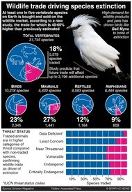ENVIRONMENT: Wildlife trade driving species extinction infographic