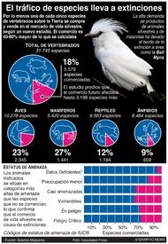 CIENCIA: Comercio de vida silvestre infographic