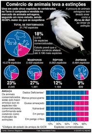 CIÊNCIA: Comércio de animais selvagens infographic