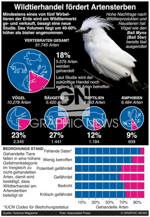 Wildtierhandel infographic