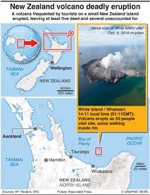 DISASTERS: New Zealand volcano eruption infographic
