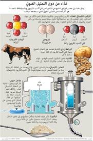علوم: غذاء من دون التمثيل الضوئي infographic