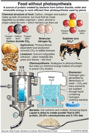 SCIENCE: Food by chemosynthesis  infographic