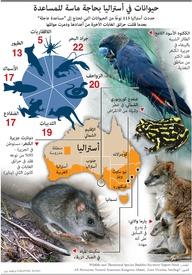 بيئة: حيوانات في أستراليا بحاجة ماسة للمساعدة infographic