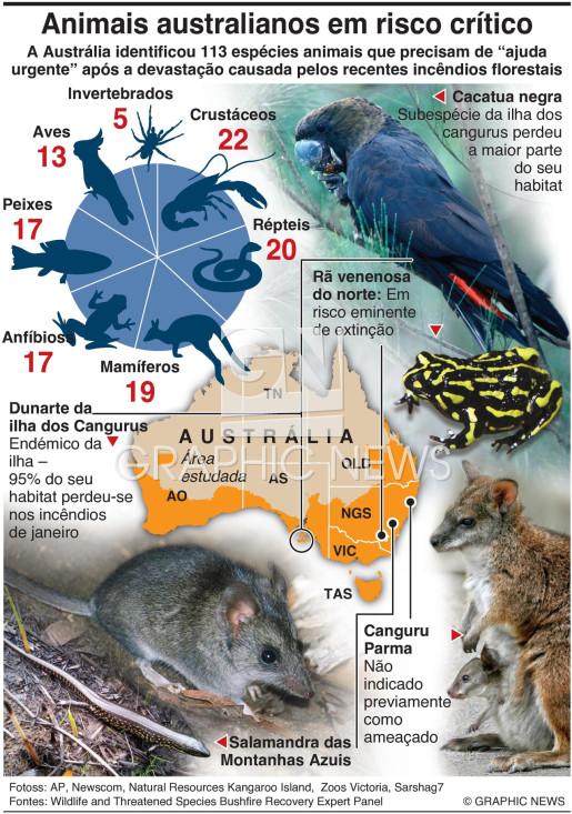 Animais da Austrália em risco infographic