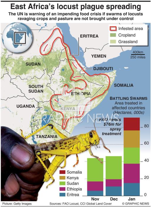 AGRICULTURE: East Africa's locust plague spreading (1 ...