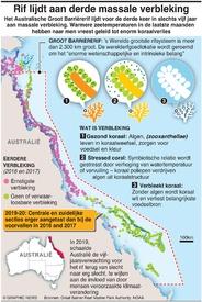 MILIEU: Massale verbleking Groot Barrièrerif infographic