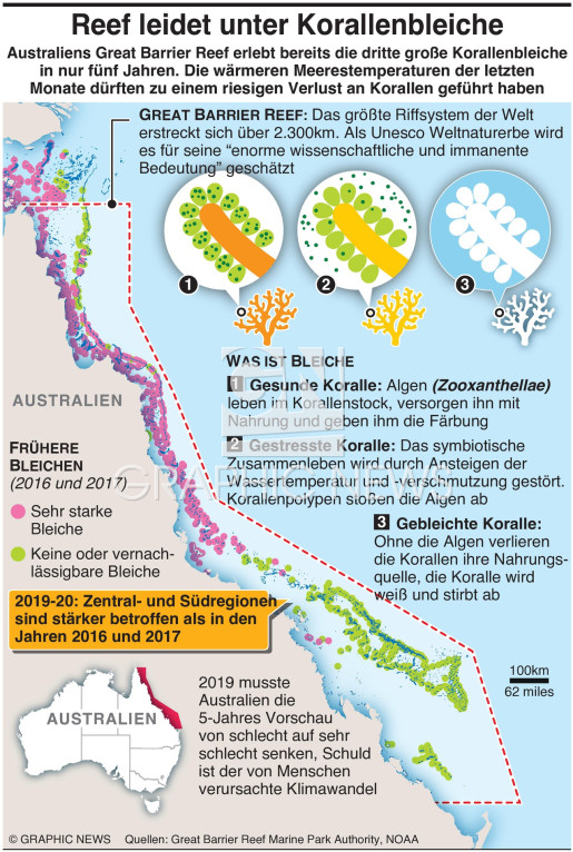 Great Barrier Reef Massenbleiche infographic