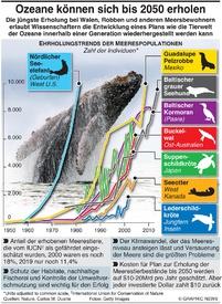 UMWELT: Ozeane können sich bis 2050 erholen infographic
