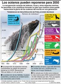 AMBIENTE: Los océanos pueden recuperarse para 2050 infographic