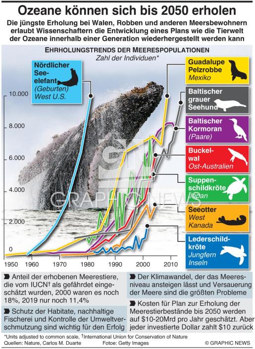 Ozeane können sich bis 2050 erholen infographic