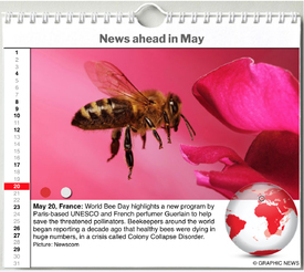 WORLD AGENDA: May 2020 interactive infographic