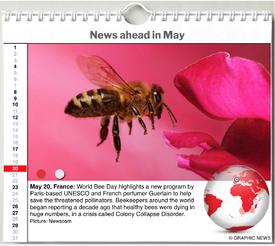 WORLD AGENDA: May 2020 interactive infographic