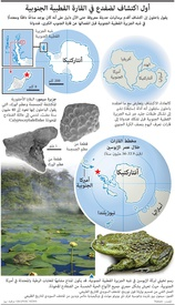 علوم: أول اكتشاف لضفدع في القارة القطبية الجنوبية infographic