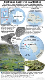 SCIENCE: First frogs discovered in Antarctica infographic