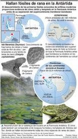 CIENCIA: Primeros fósiles de rana descubiertos en la Antártida infographic