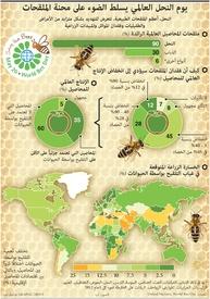 بيئة: يوم النحل العالمي infographic