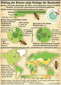 UMWELT: Welttag der Bienen infographic
