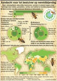 MILIEU: Wereldbijendag infographic