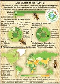 AMBIENTE: Dia Mundial da Abelha infographic