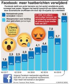 SOCIAL MEDIA: Facebooks oorlog tegen haatmail infographic