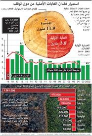 بيئة: استمرار فقدان الغابات الأصلية من دون توقف infographic