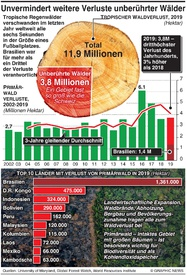 UMWELT: Globale Abholzung steigt weiter infographic