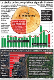 AMBIENTE: Incremento de la deforestación global infographic