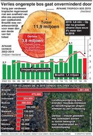 MILIEU: Wereldwijde ontbossing toegenomen infographic