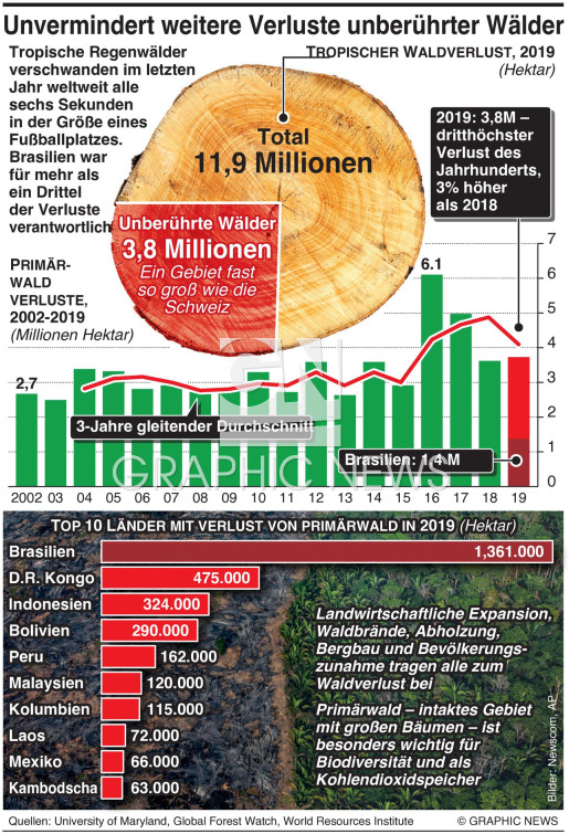 Globale Abholzung steigt weiter infographic