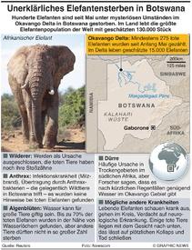 AFRIKA: Mysteriöses Elefantensterben infographic