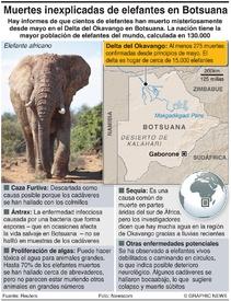 ÁFRICA: Muertes misteriosas de elefantes infographic