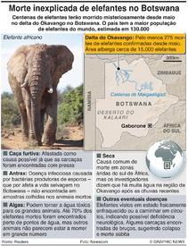 ÁFRICA: Morte misteriosa de elefantes infographic