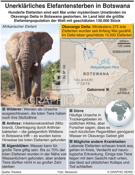 Mysteriöses Elefantensterben infographic