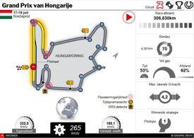 F1: GP van Hongarije 2020 interactive infographic