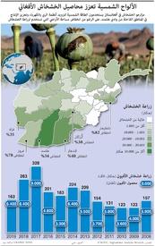 أفغانستان: الألواح الشمسية تعزز محاصيل الخشخاش الأفغاني infographic