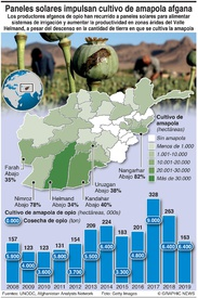 AFGANISTÁN: Paneles solares impulsan cosechas de amapola afgana infographic