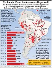 UMWELT: Steigerung der Feuer im Amazonas Regenwald infographic