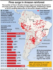 ENVIRONMENT: Surge in Amazon forest fires infographic