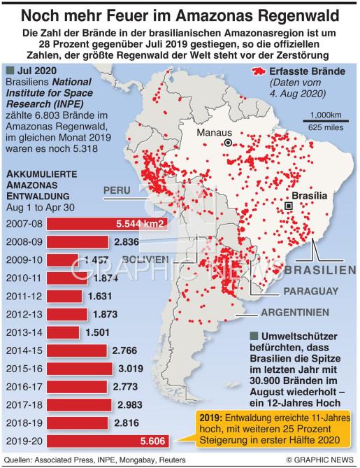 Steigerung der Feuer im Amazonas Regenwald infographic