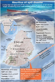 ENVIRONMENT: Mauritius oil spill disaster infographic