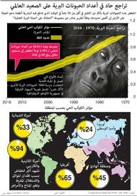 بيئة: تراجع حاد في أعداد الحيونات البرية على الصعيد العالمي infographic