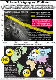 UMWELT: Wildtierpopulationen sind um zwei Drittel gefallen infographic