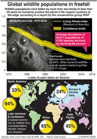ENVIRONMENT: Wildlife falls by more than two thirds infographic