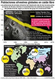 AMBIENTE: Las poblaciones de animales silvestres caen más de dos tercios  infographic