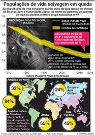 AMBIENTE: Vida selvagem reduz-se em mais de dois terços infographic