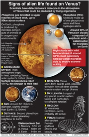 SPACE: Signs of alien life found on Venus? infographic